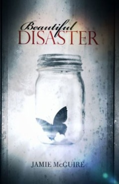 beautiful disaster book cover